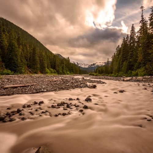 Afternoon light in Mt Rainier by Krishanu