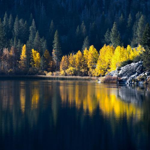 Autumn Dawn Gull Lake by Dave