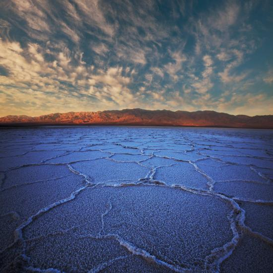 Death Valley: Thriving Life in Extreme Conditions