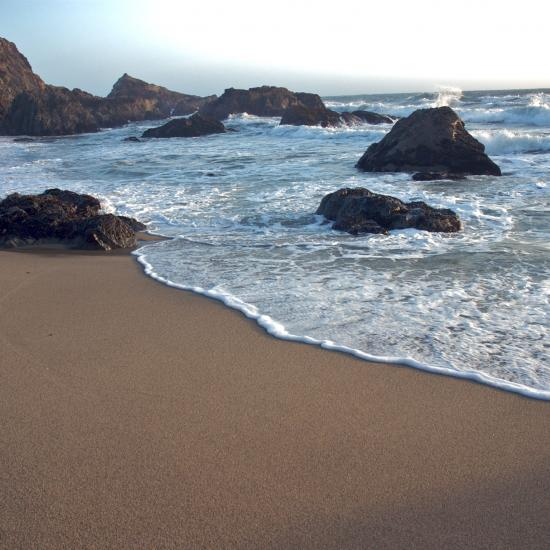 Sonoma Coast: Much More than Fine Wine