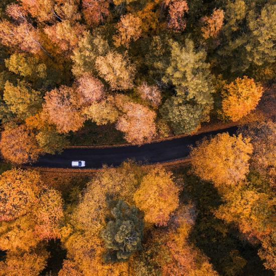Drone Photography Tutorial: How to Take Killer Photos