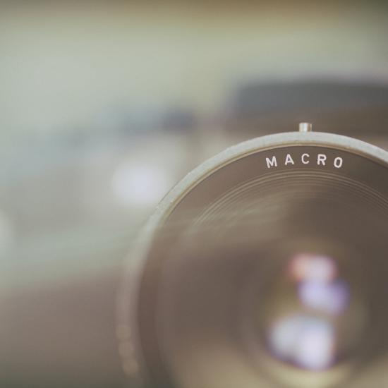 How to Choose a Macro Lens