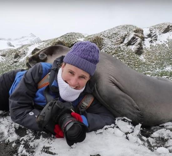 Watch a Baby Elephant Seal Trample a Wildlife Photographer