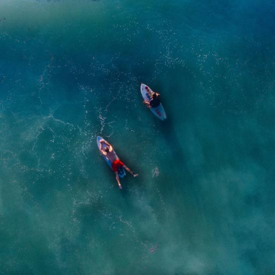 Hilarious Drone Photos Show Photographer Realizing Sharks Are Headed for His Family