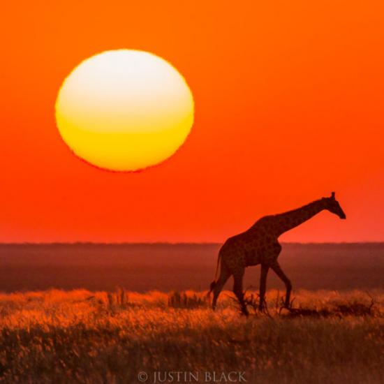 Namibia Photography and Travel Guide