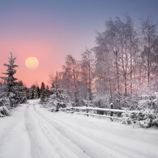 Must-Have Tips for Winter Photography