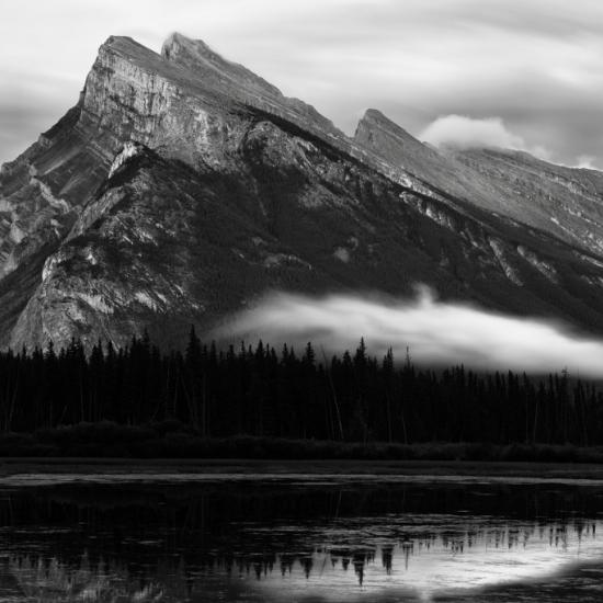 Beginner Black and White Photography Tips