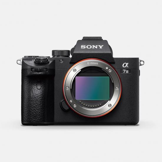 Sony A7 III vs. Nikon D500