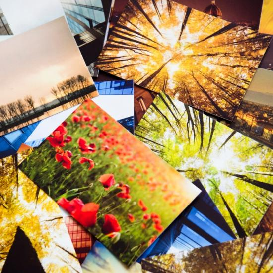 Canvas or Paper Prints: Which is Best for You?