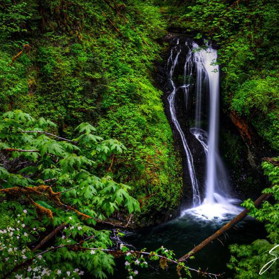 15 Incredible Oregon Waterfalls You Need to See