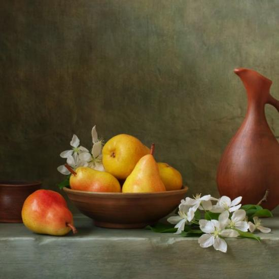 Beginner's Guide to Still Life Photography