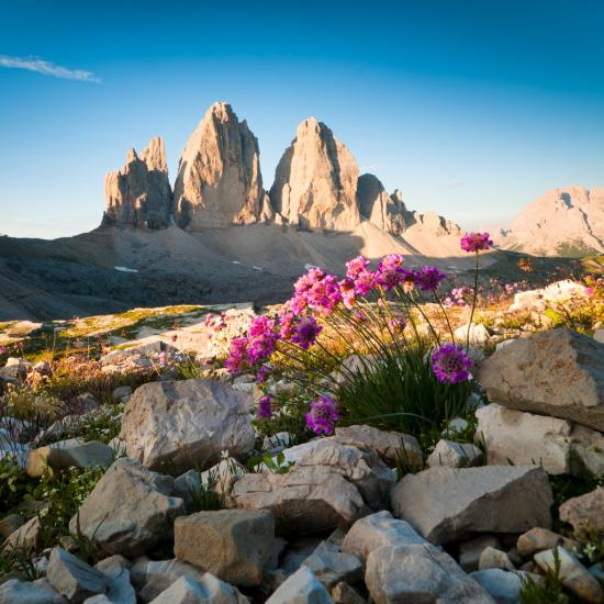 How to Create Foreground Interest in Landscape Photography