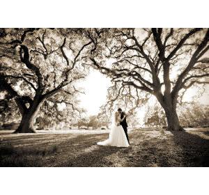 10 Sure-Fire Success Tips for Aspiring Wedding Photographers