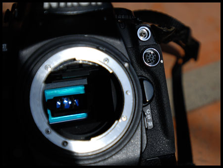 Photography Tip—Solutions for a Broken Camera, Part 2