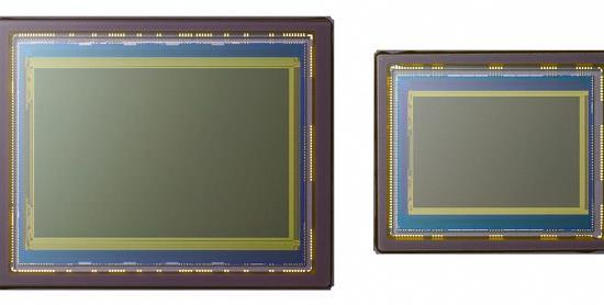 Photography Tip—How To Select a Digital Camera Based on Its Sensor Size