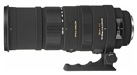 7 Photography Adventures Worthy of the Sigma 150–500mm f/5–6.3 DG APO OS Super-Zoom Lens