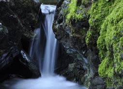 Using a DSLR Camera to Shoot Vertical Scenery, such as a Waterfall!