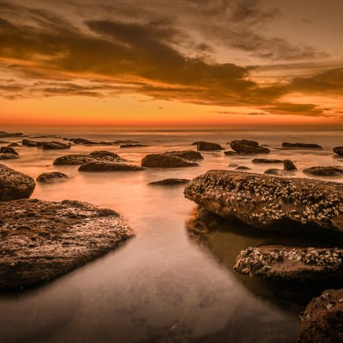 Shelly beach sunrise by Dave