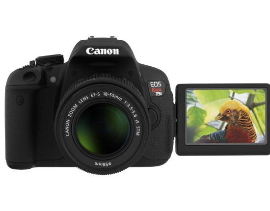 Canon EOS Rebel T5i: New Model with Refinements for the Entry-Level DSLR Photographer