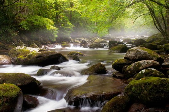 Photography Tip -The Magic of Water