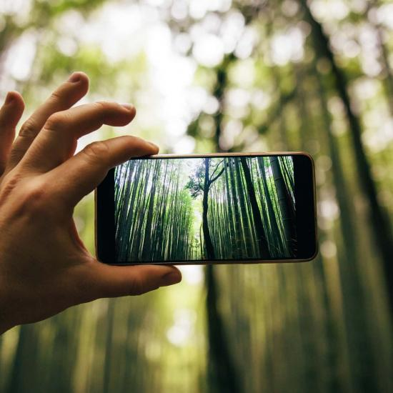 Mobile Photography Gadgets That Will Help You Step Up Your Game